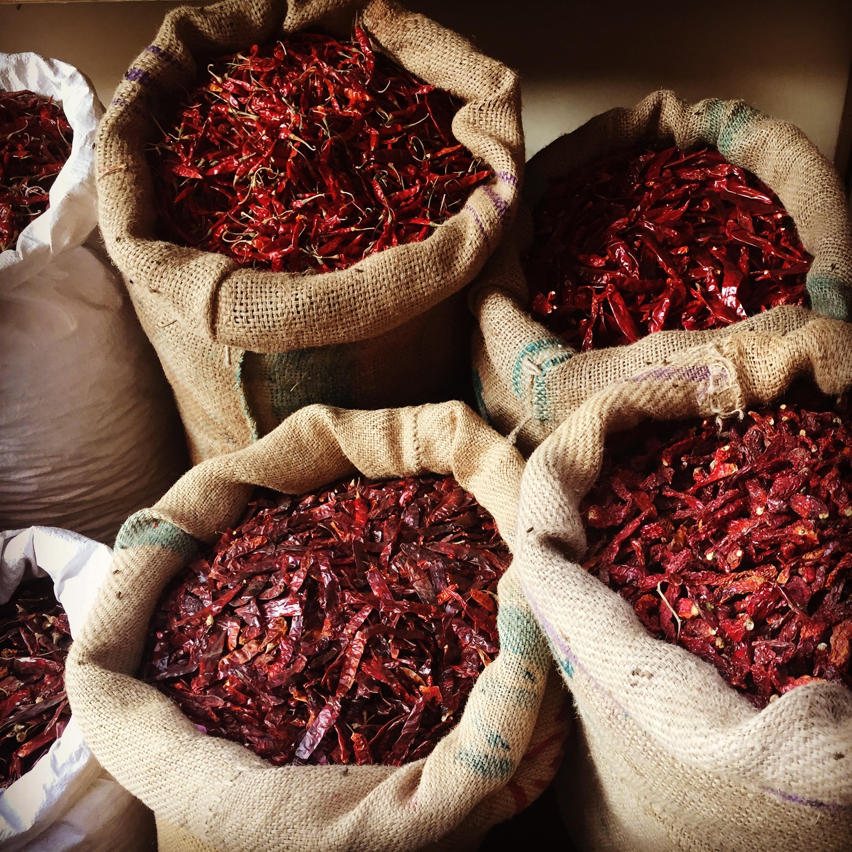 Indien Jaipur Chilis