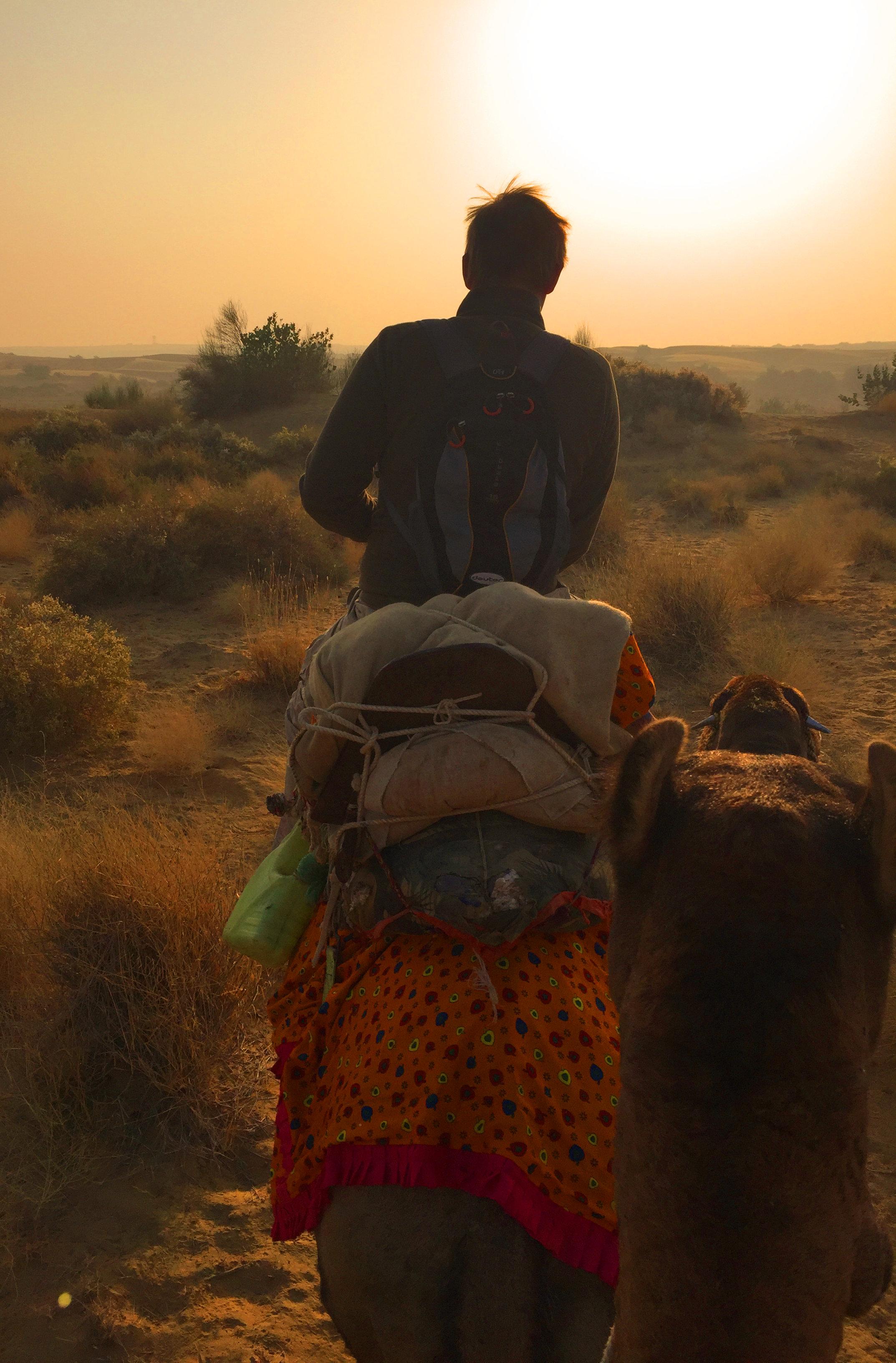 Indien Jaisalmer Kamelsafari Matthias