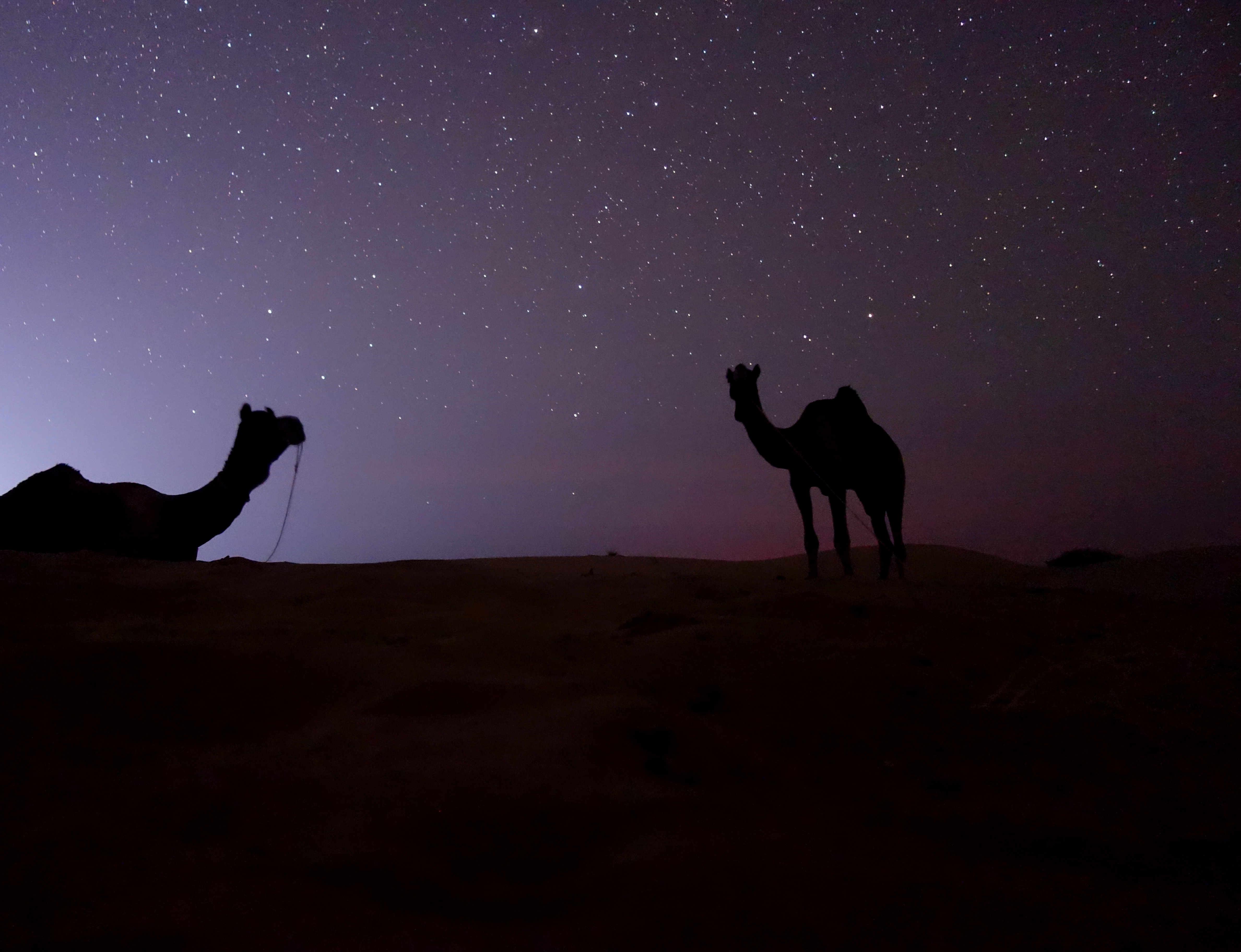 Indien Jaisalmer Kamelsafari Sternenhimmel