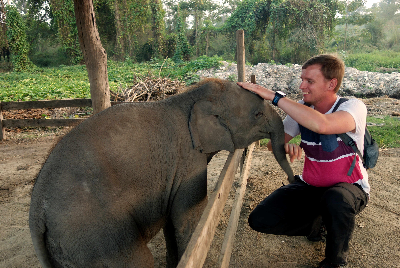 Nepal Bardia Nationalpark Elefant Hattisar