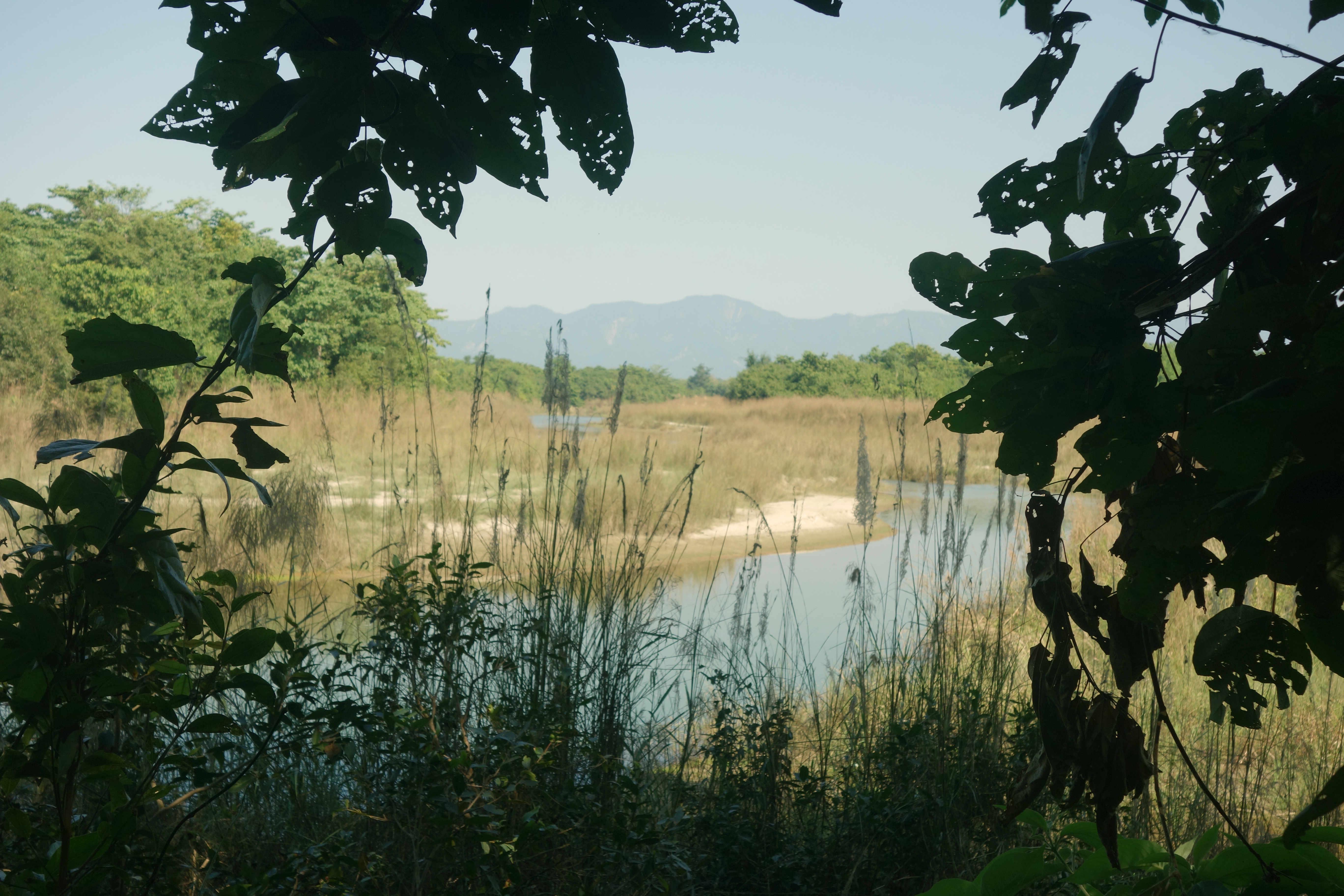 Nepal Bardia Nationalpark Fluss