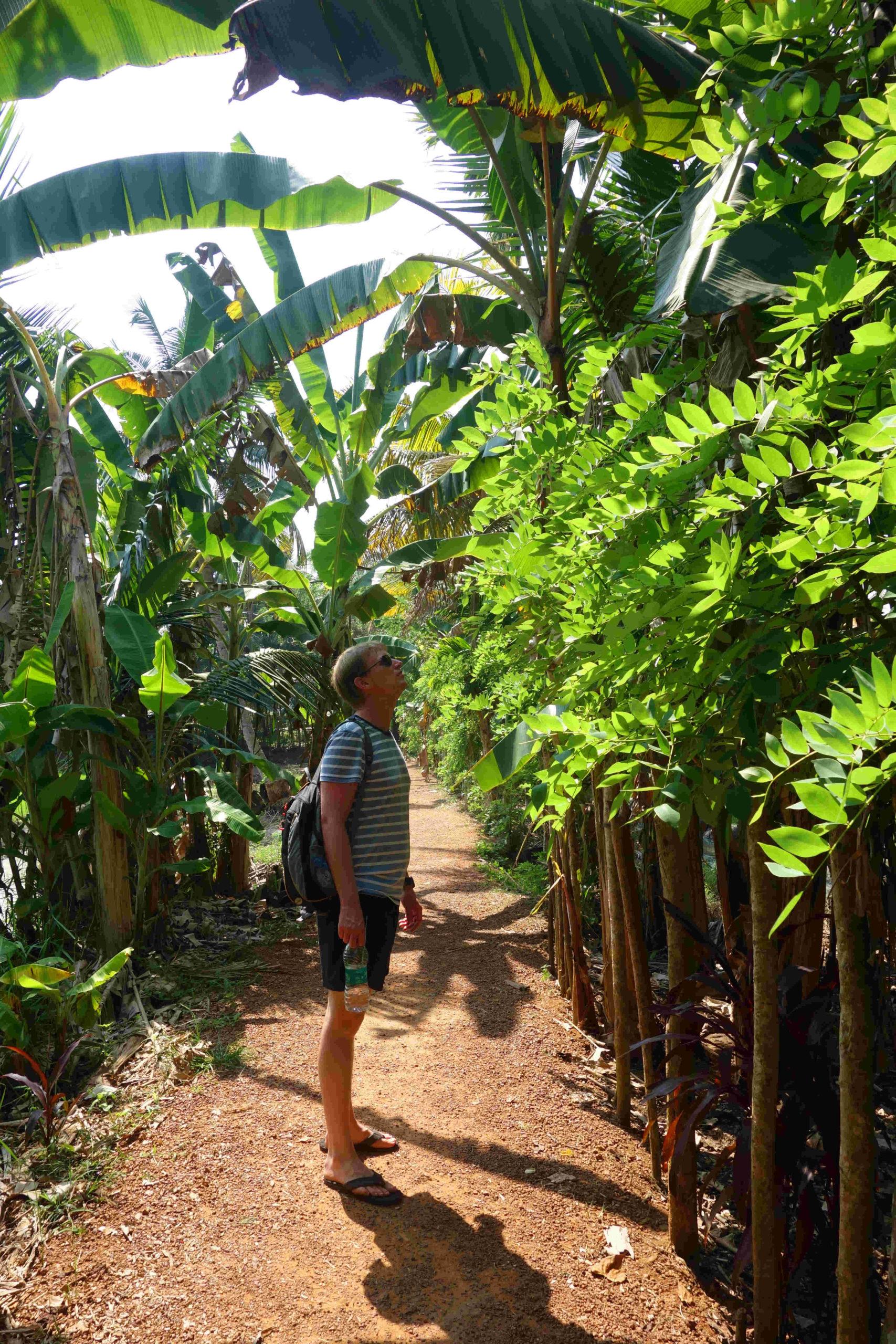 Aleppey Kerala Backwaters Matthias mit Pflanzen