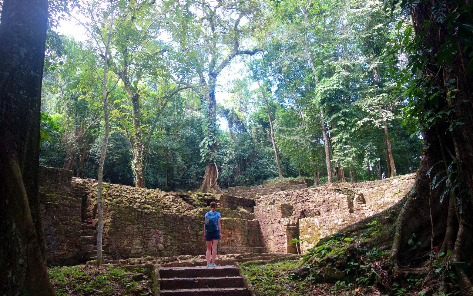 Mexiko Palenque Dschungel