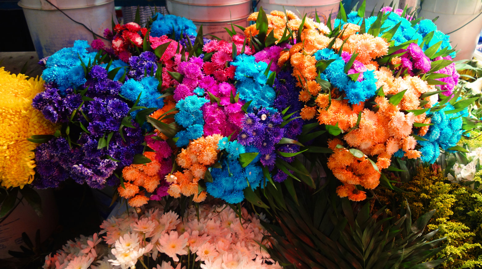 Mexiko Markt Blumen