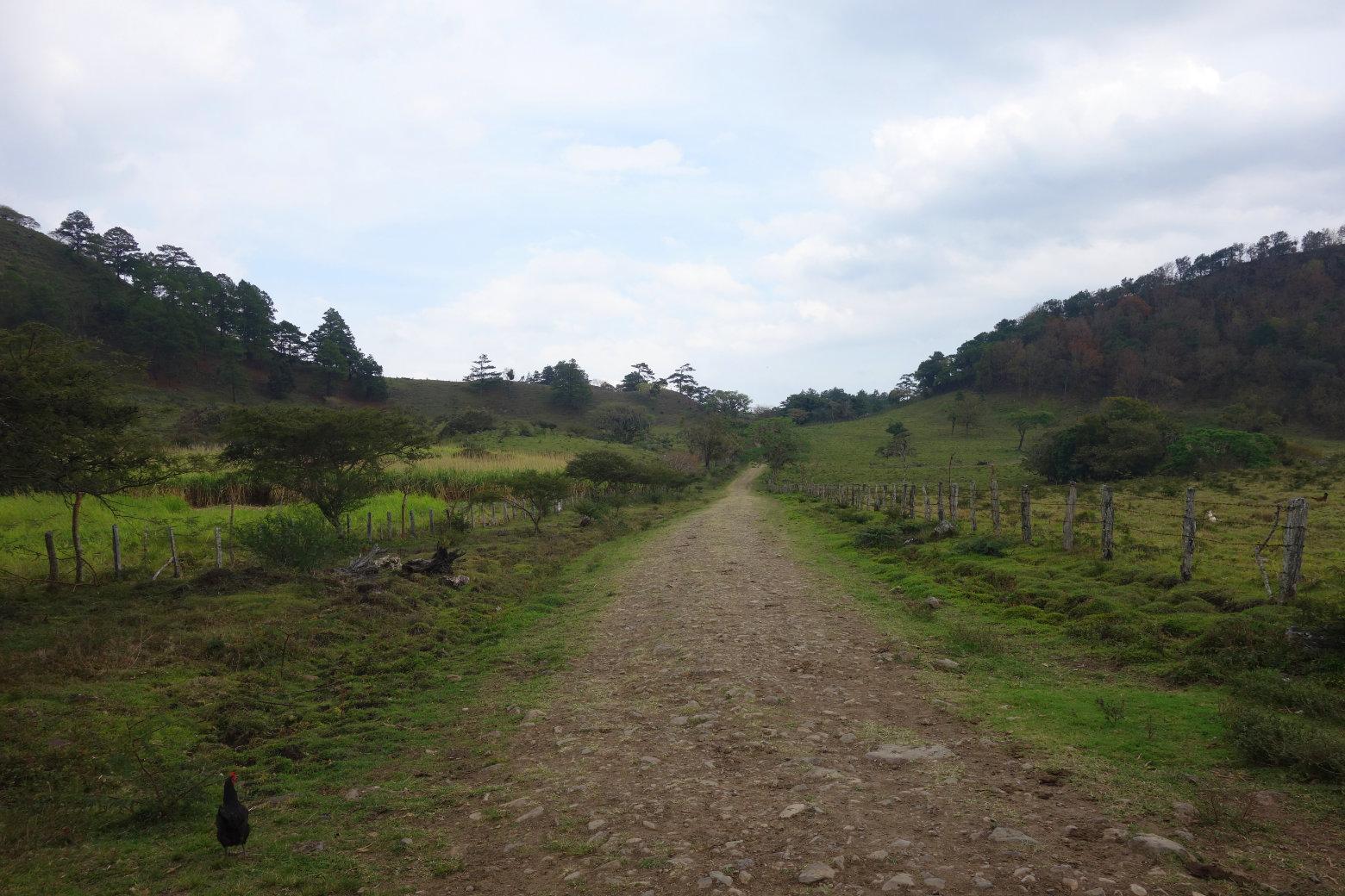 Nicaragua Norden San Rafael Weg durch Felder