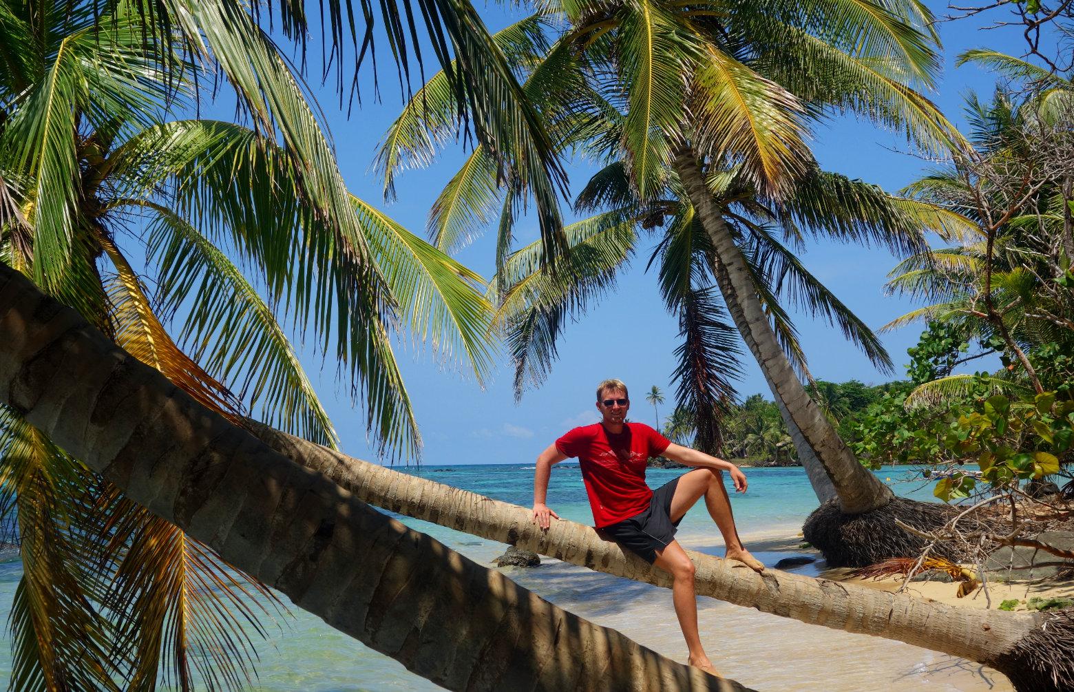Nicaragua Reisetipps Palme