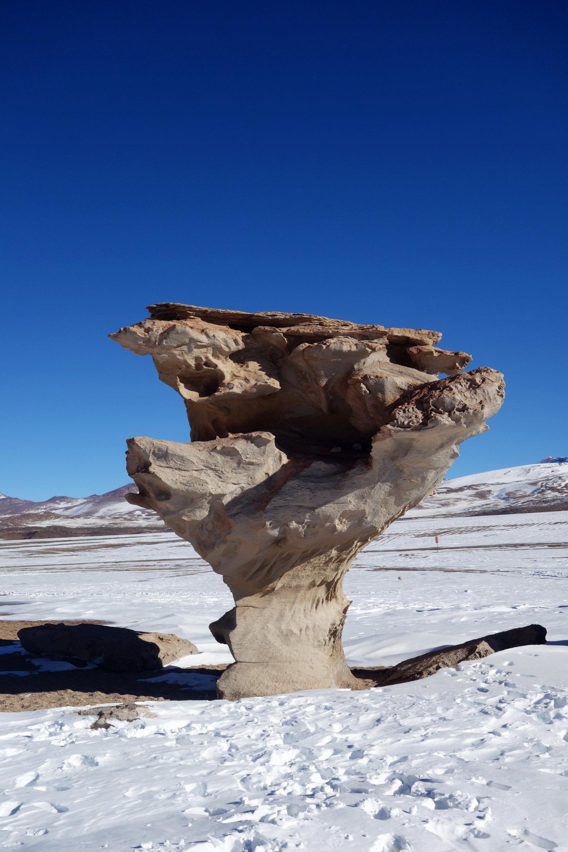 Bolivien Salar de Uyuni Arbol de Piedra
