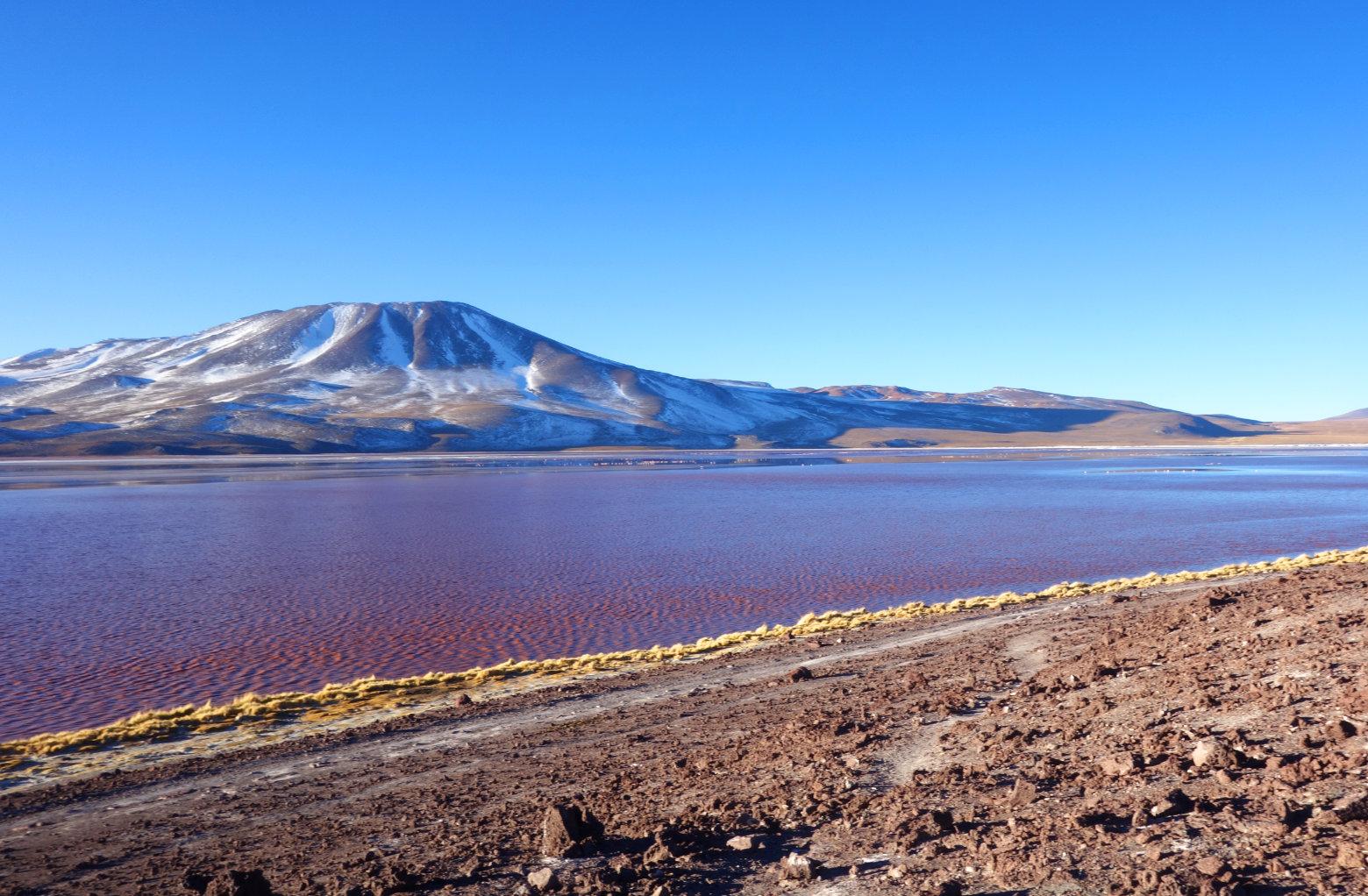 Bolivien Salar de Uyuni Laguna Colorada