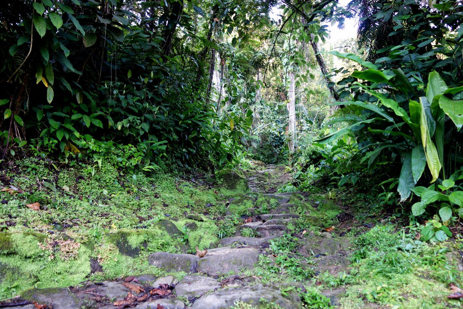 Ciudad Perdida Stufen