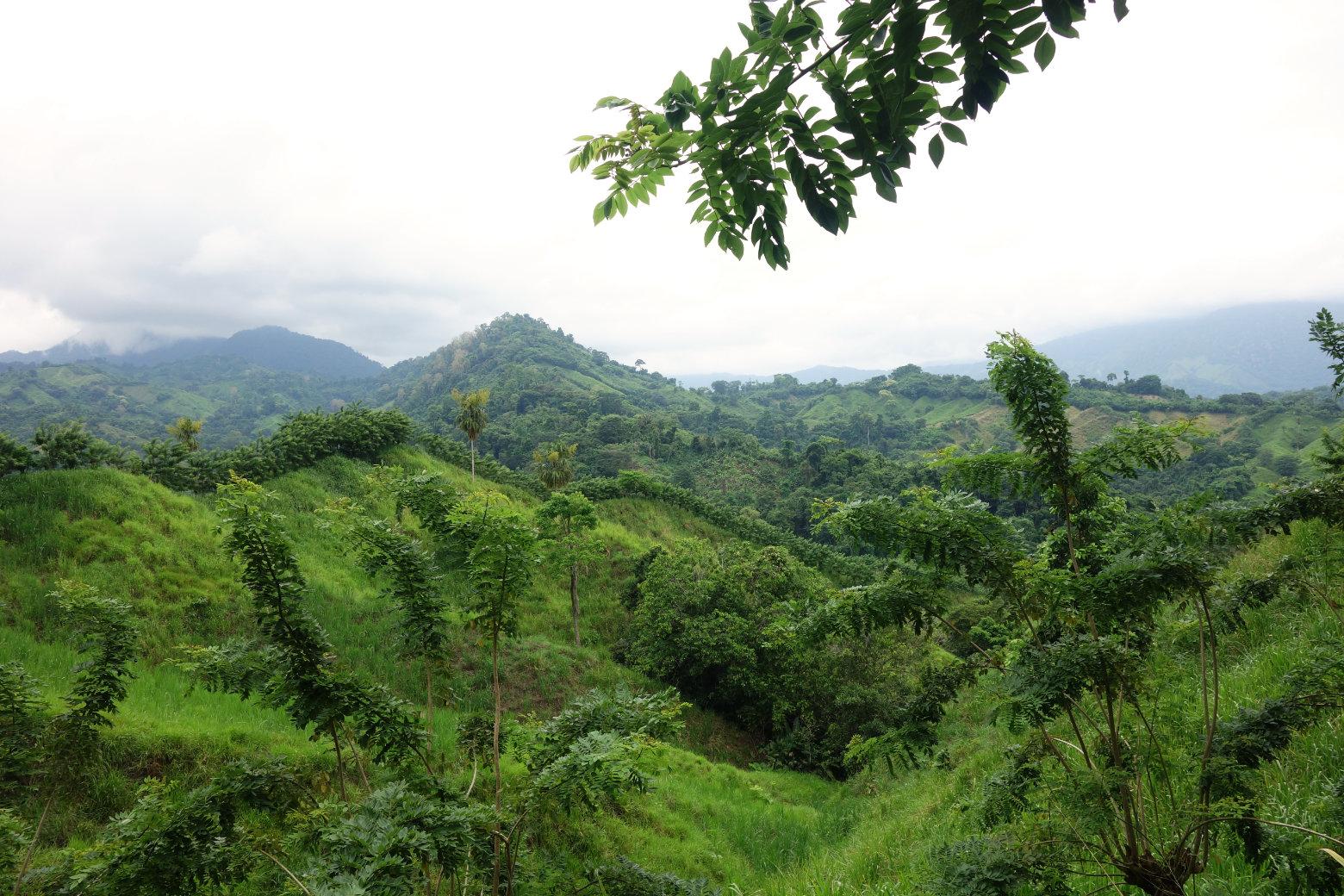 Ciudad Perdida grüne Berge
