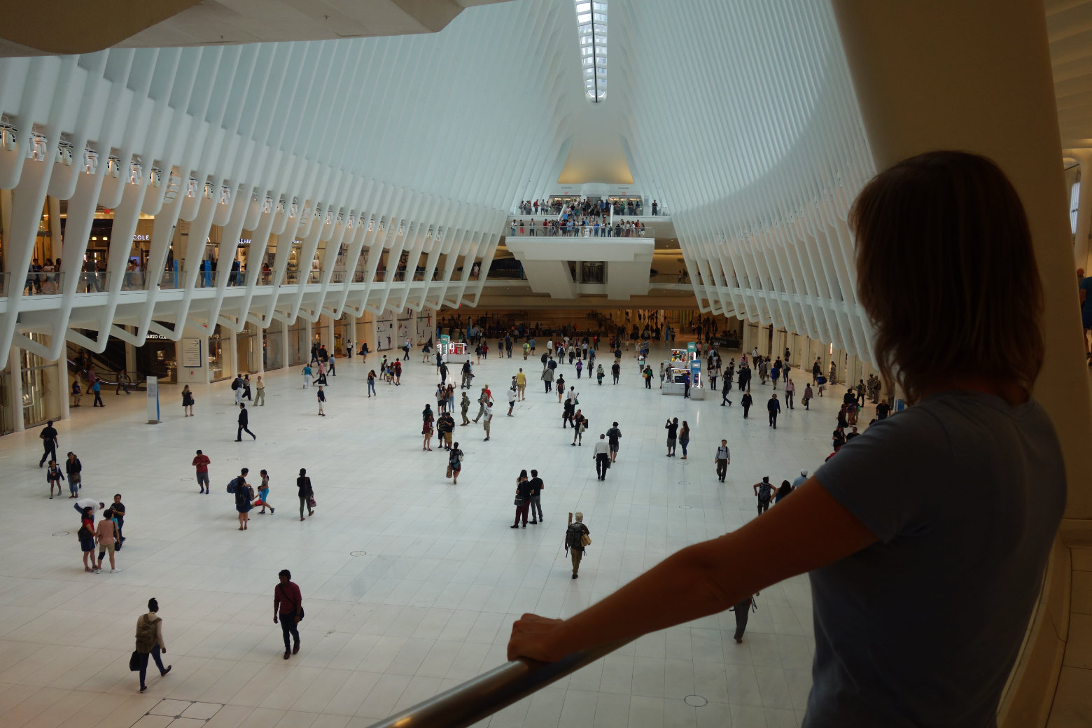 New York Oculus