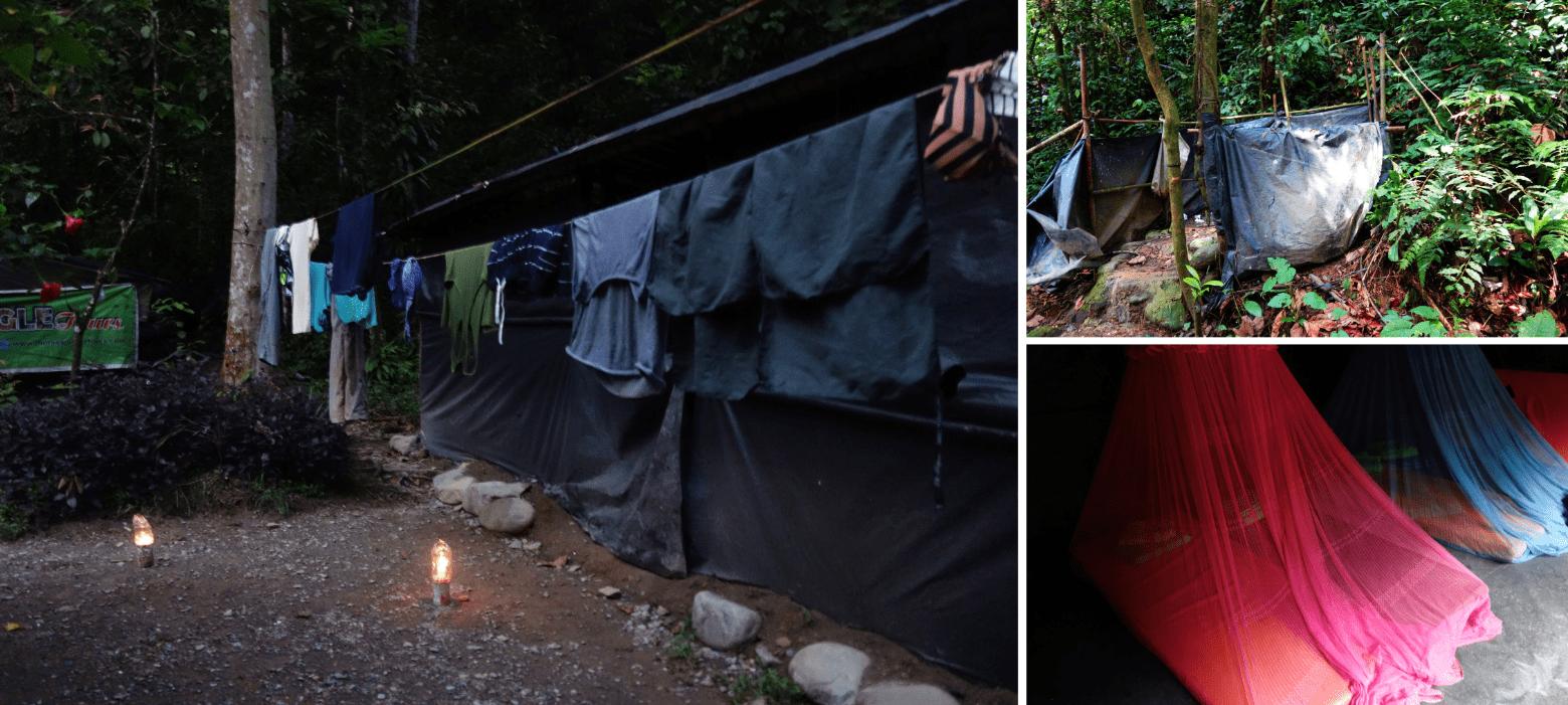 Bukit Lawang Camp
