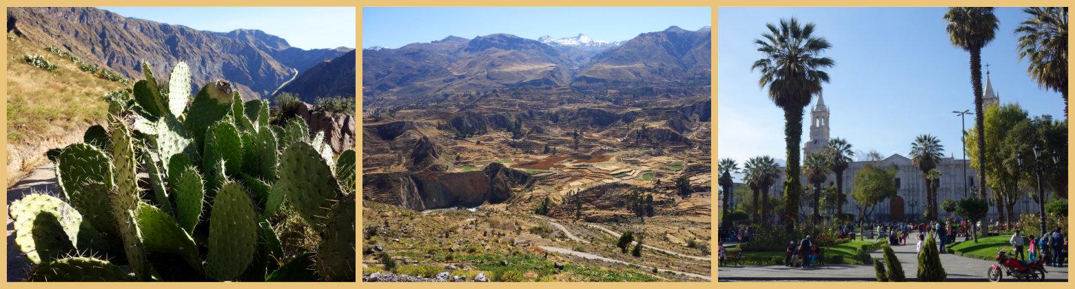 Peru Reisetipps Arequipa Colca Canyon
