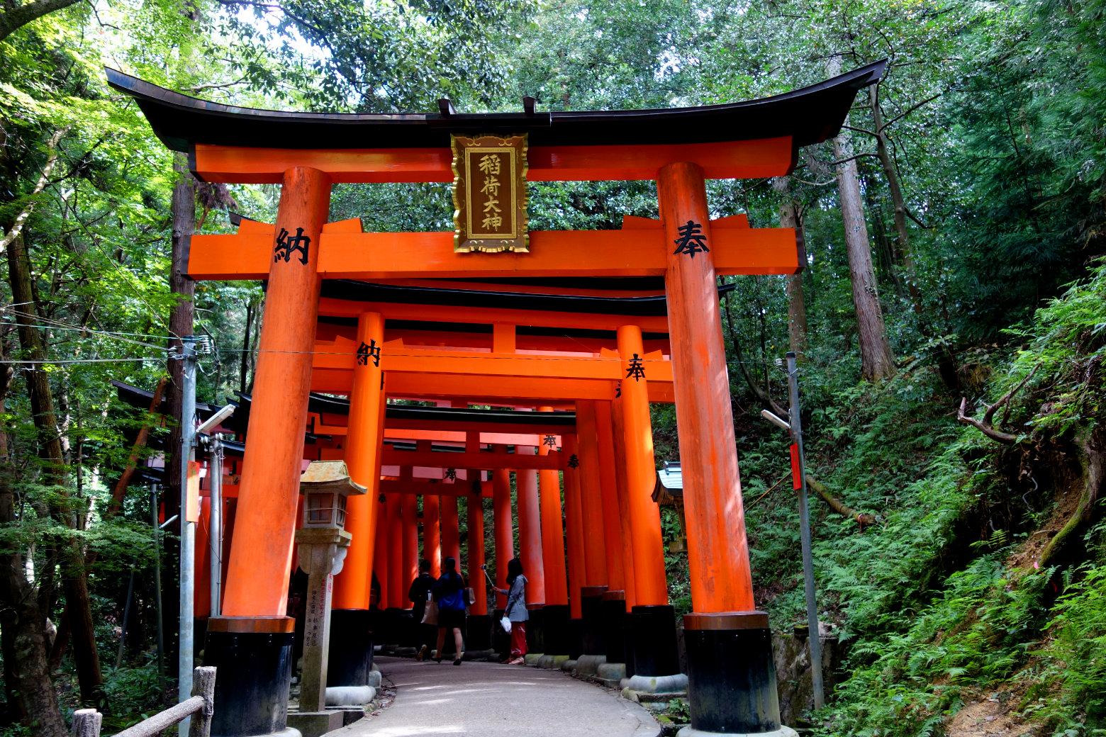 Kyoto Fushimi Inari Wald