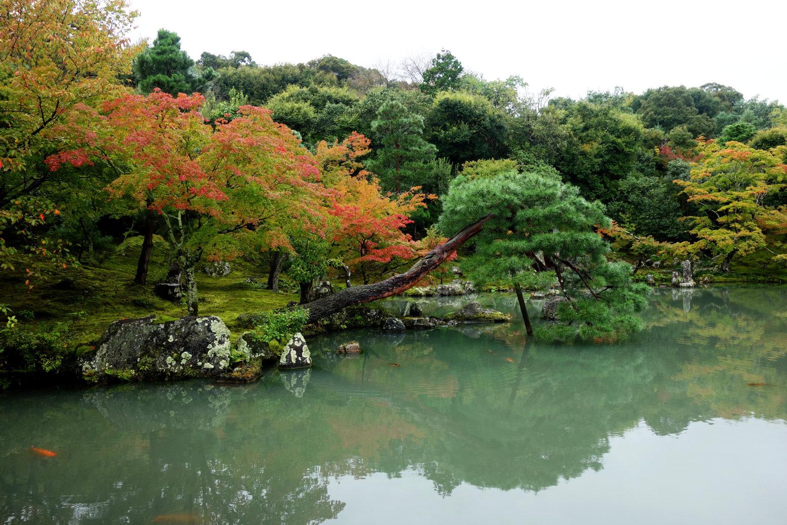 Kyoto Tenryu Garten