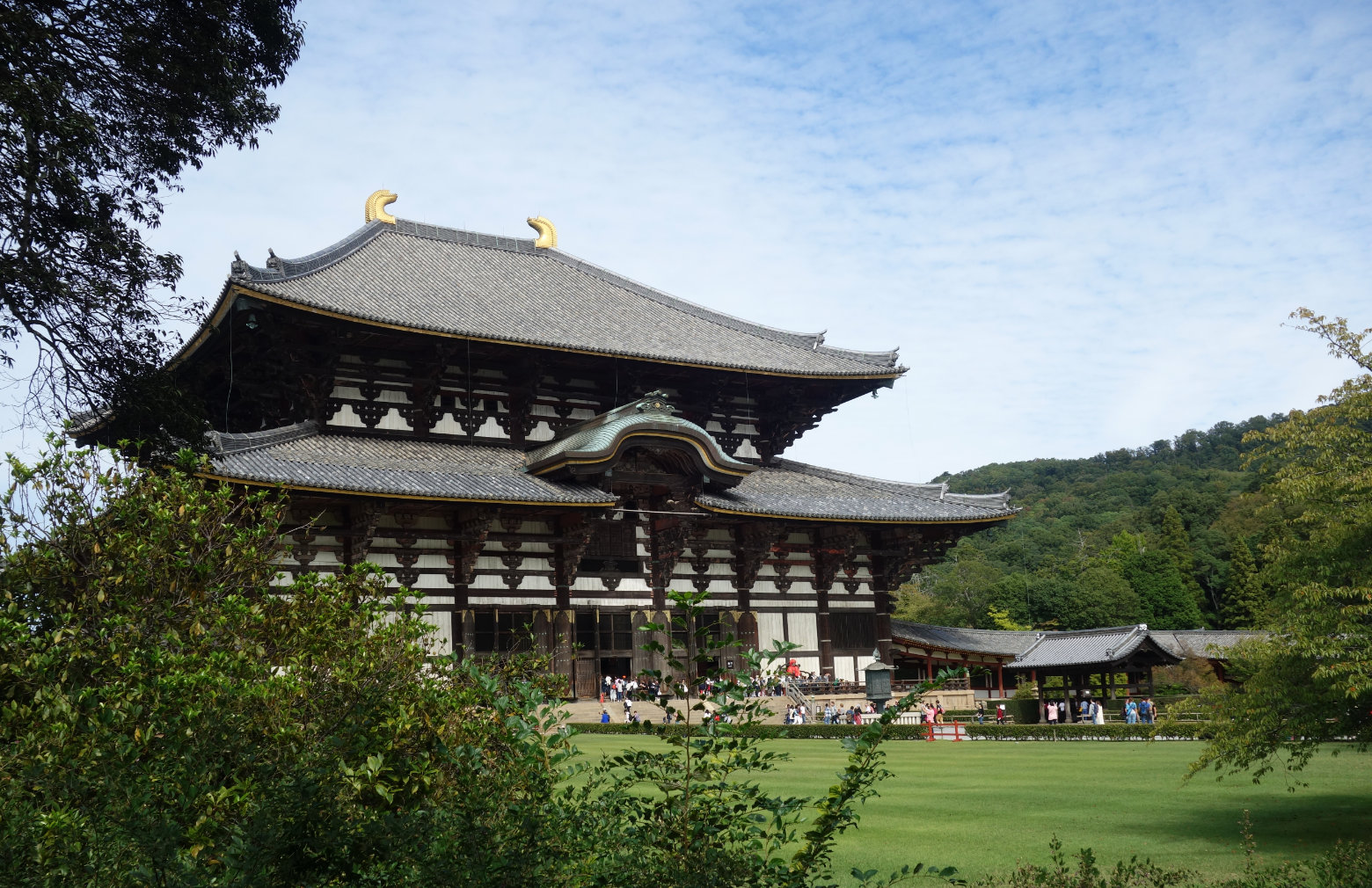 Nara Todaiji Tempel Seite