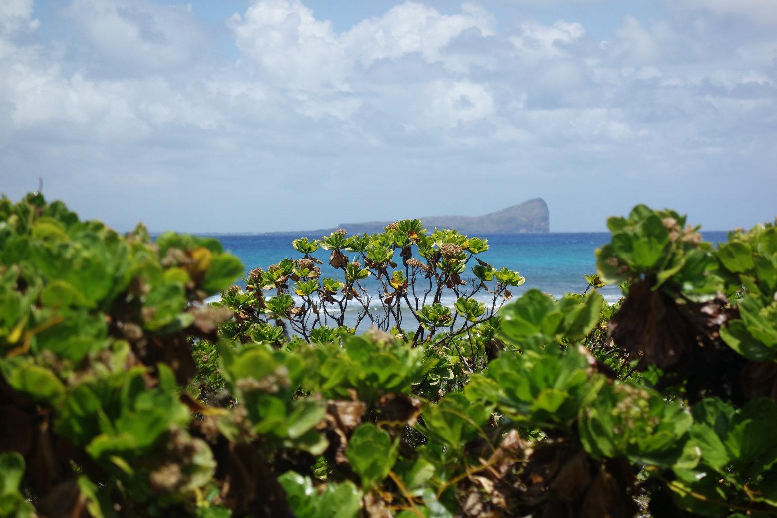 Gabriel Island Blick auf Gunners Island