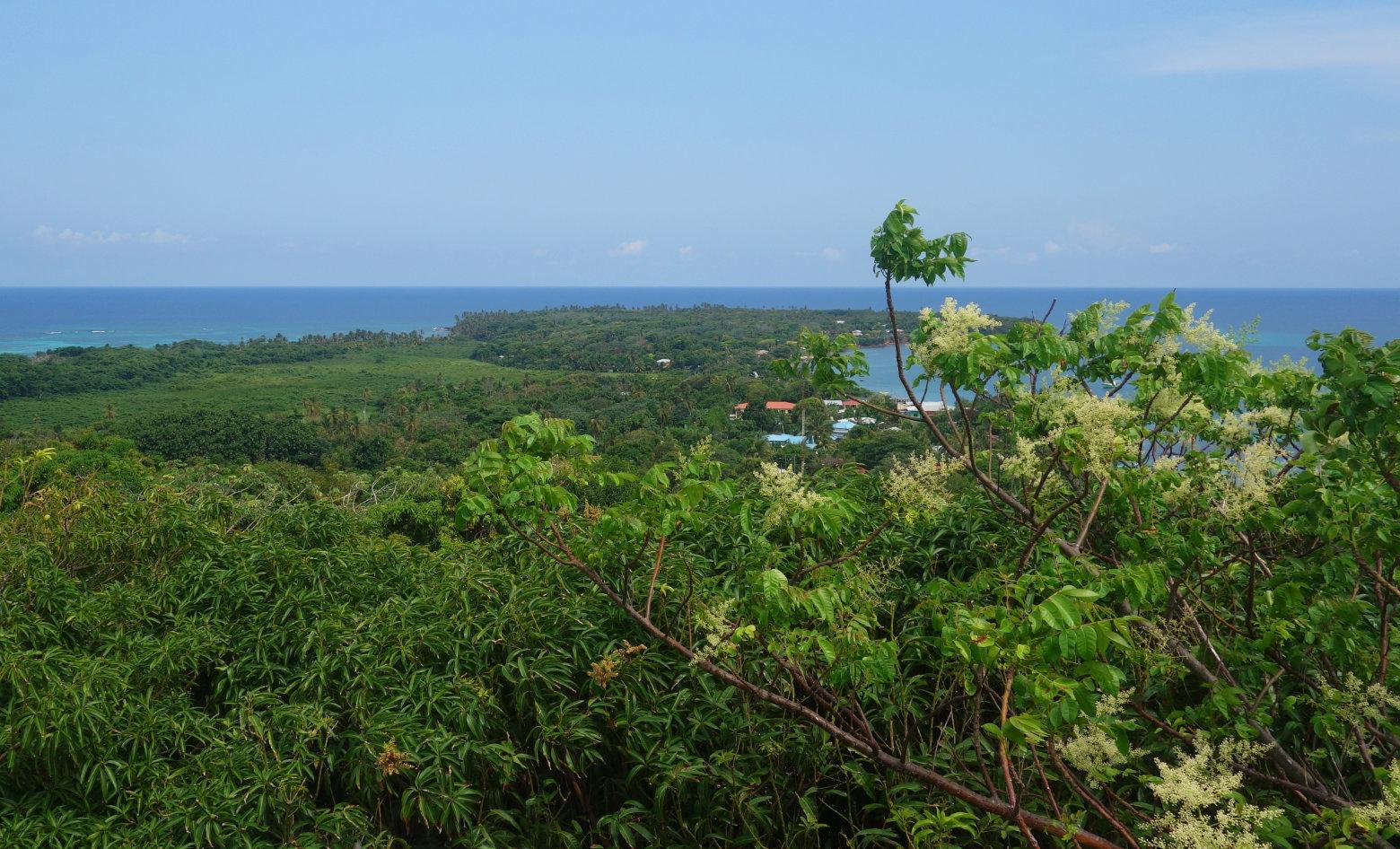Panorama Ausblick Little Corn Island