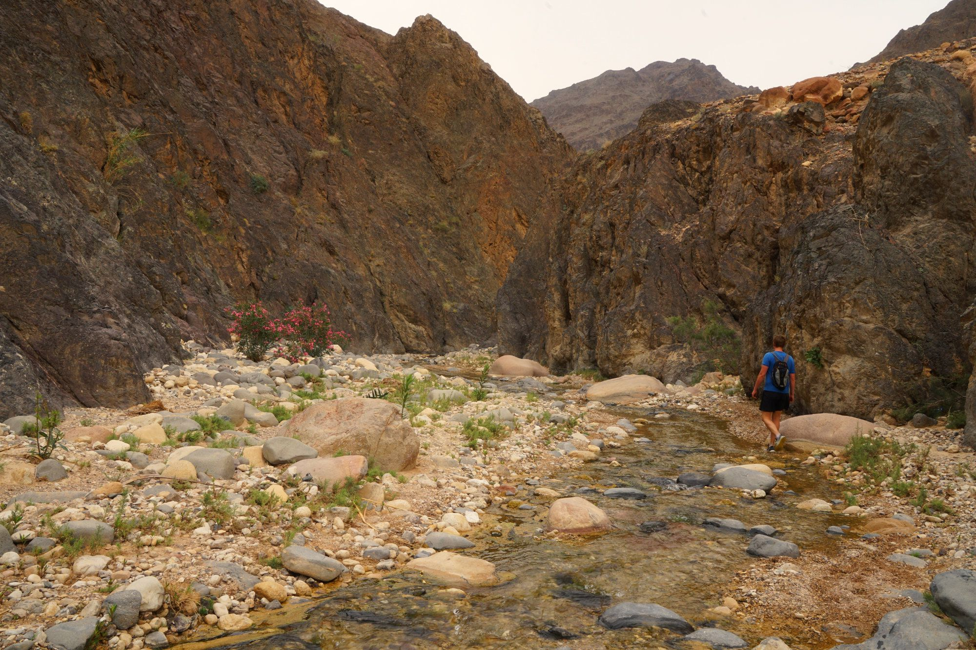 Dana Wadi Ghuwayr