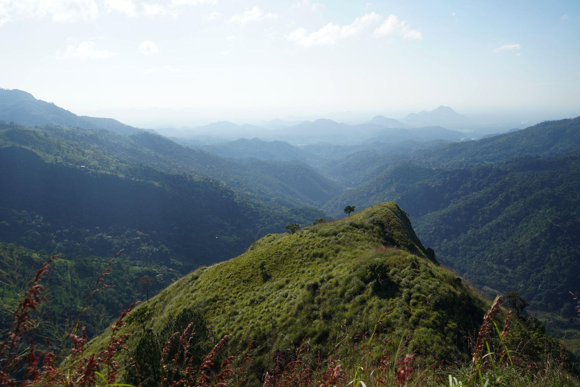 LIttle Adams Peak Blick