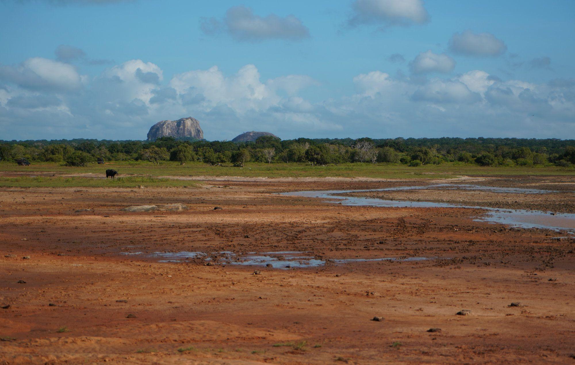 Yala Nationalpark