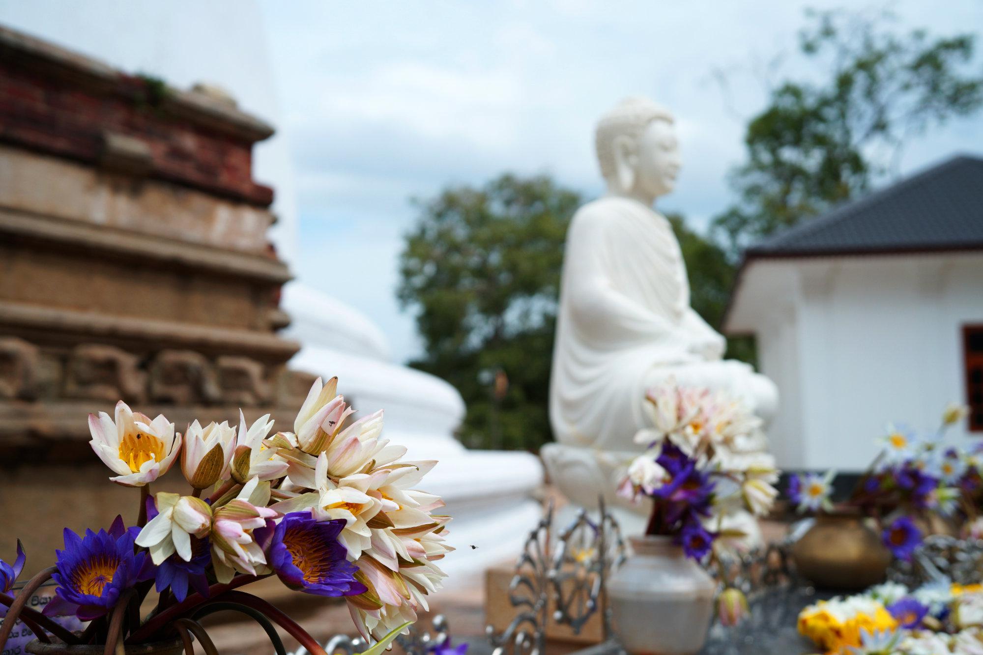 Anuradhapura Blumen Tempel Buddha
