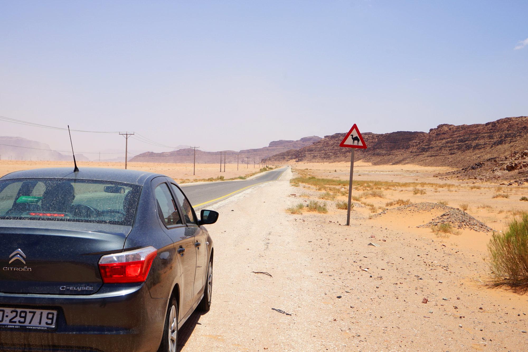 Jordanien Transport Kamel Schild